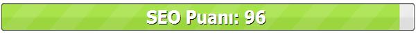 ParavanBlog-SEO-Puanı